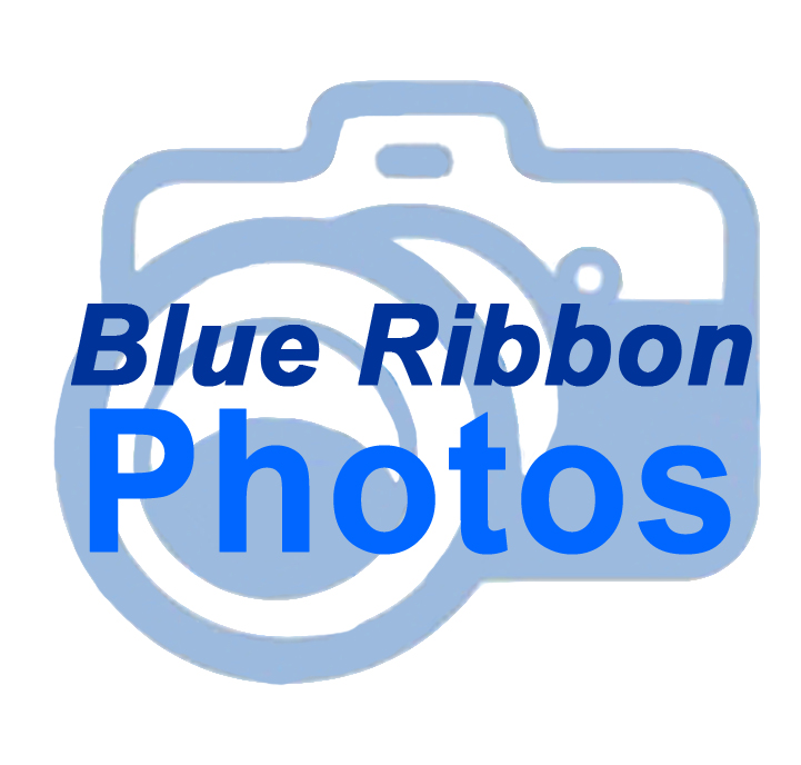 Blue Ribbon Photos